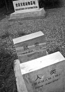 """Graveyard Homo Sapien"" Photo Credit: Linda Wolf"