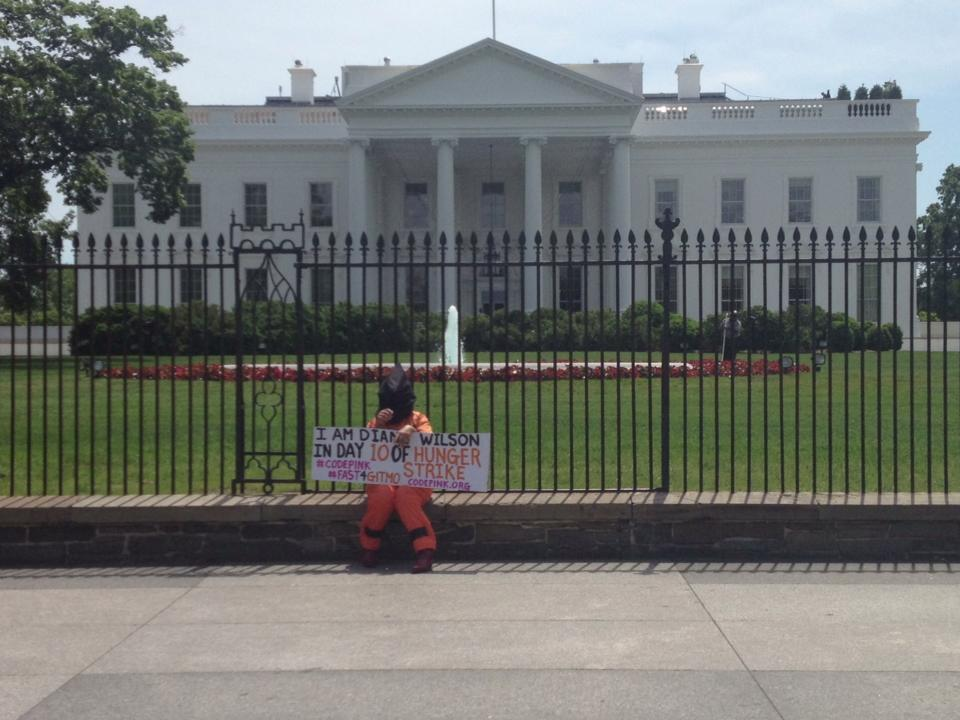 Diane Wilson in front of the White House.