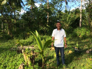 Fair Trade farmer works to replant coconut trees