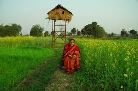 Dr. Vandana Shiva at Navdanya